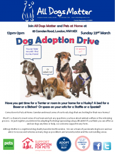 Pets at Home Adoption Drive amended - Copy
