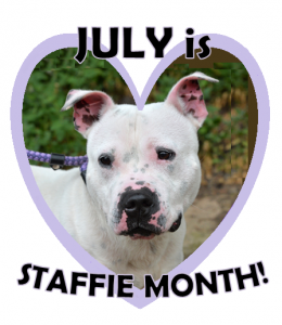 STAFFIE MONTH SNOWY]