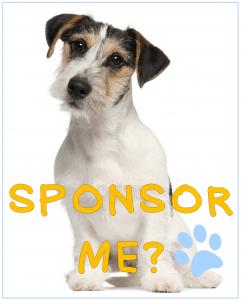 sponsor me jrt