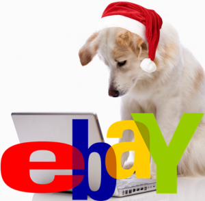 eBay Charity Auction | All Dogs Matter