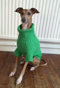 rl-cashmere-sweater-green-fry-1